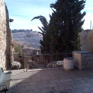 8-Mount-of-Olives-Jerusalem1